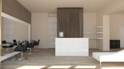 Minimal Modern Space - Hall and Reception